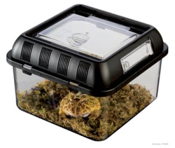 Bilde av Plast Terrarium Breeding Box